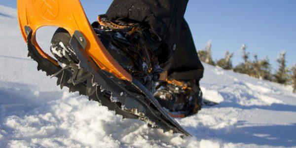 snowshoes_8